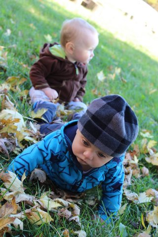 Two little boys in the leaves