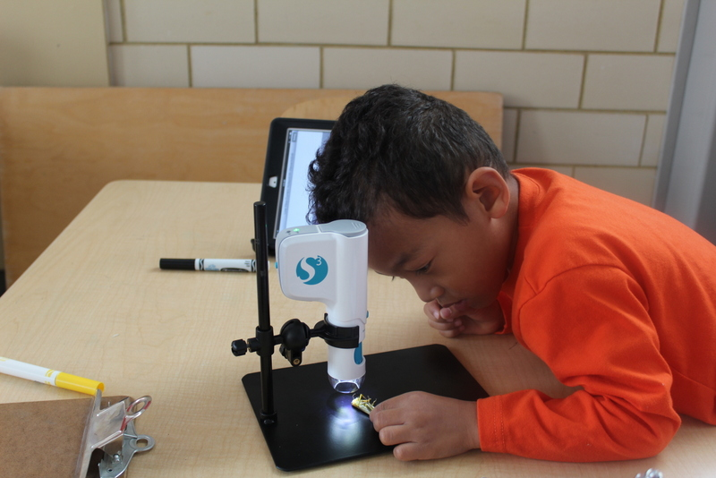 Little boy working with Microscope